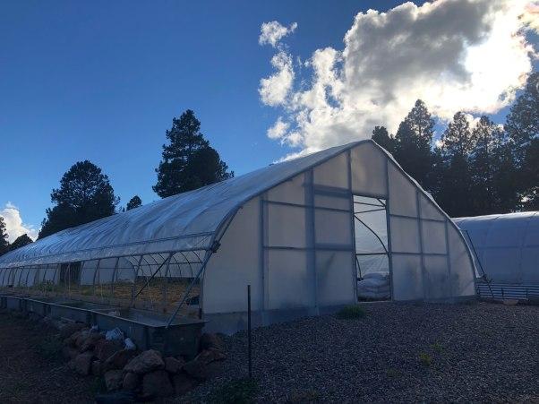 greenhouse 2019